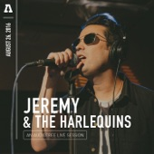 Jeremy & The Harlequins - Into the Night