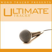 A Strange Way To Save the World (As Made Popular By 4him) [Performance Track] - Ultimate Tracks - Ultimate Tracks