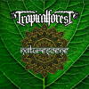 Anak Tropis - Tropical Forest