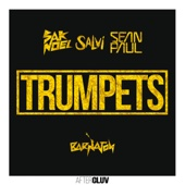 Trumpets (feat. Sean Paul) [Radio Mix] - Sak Noel & Salvi