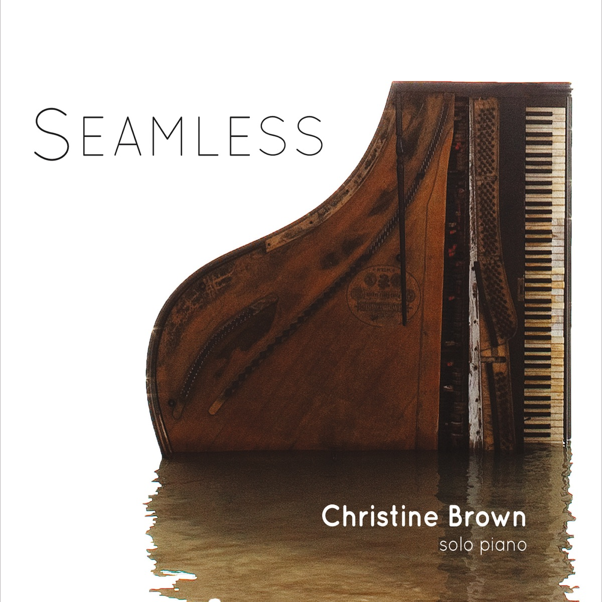 Seamless Christine Brown CD cover