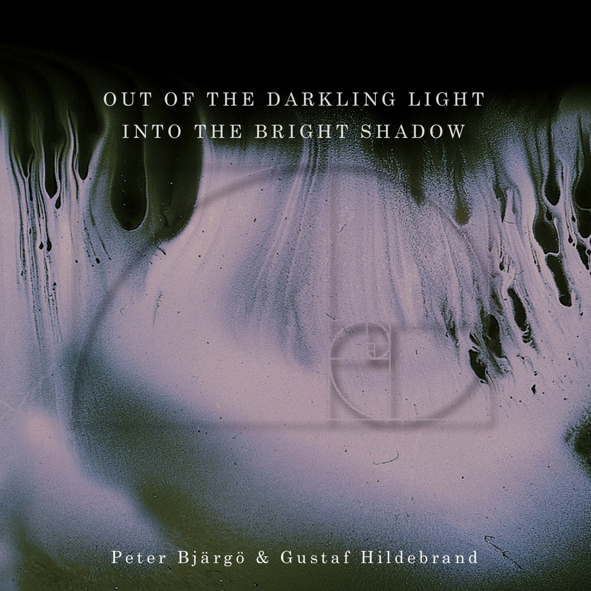 Out of the Darkling Light Into the Bright Shadow Peter Bjärgö  Gustaf Hildebrand CD cover