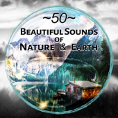 50 Beautiful Sounds of Nature & Earth: New Age Music, Healing Water Affirmations, Heavenly Relaxation, Meditation, Yoga, Calming Sea Sound, Rain for Deep Sleep, Serenity & Massage Music