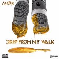 Drip from My Walk - Single Mp3 Download