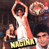 Nagina (Original Motion Picture Soundtrack)