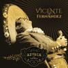 Hermoso Cariño (En Vivo [Un Azteca en el Azteca]) - Vicente Fernández