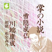 雪隠成仏: 掌の小説
