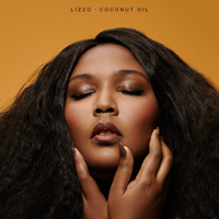 download lagu Lizzo - Good as Hell