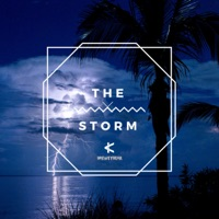 The Storm - Single