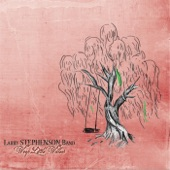 Larry Stephenson Band - It Almost Feels Like Love