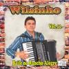 Baile no Rancho Alegre, Vol. 11 - Wilsinho