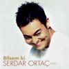 Serdar Ortaç - Bilsem Ki artwork
