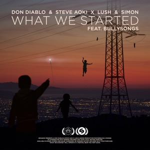 Don Diablo, Steve Aoki & Lush & Simon - What We Started feat. BullySongs