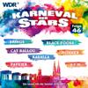 Karneval der Stars, Folge 46 - Various Artists