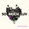 So Much Luv - Single