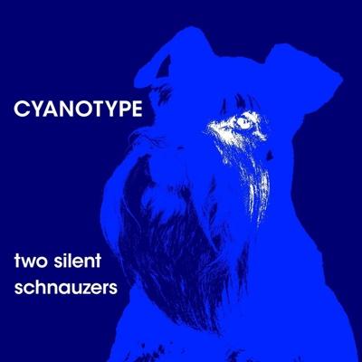 Two Silent Schnauzers - Cyanotype album