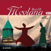 Mevlana Best Of Vol 3