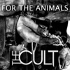 For the Animals Single