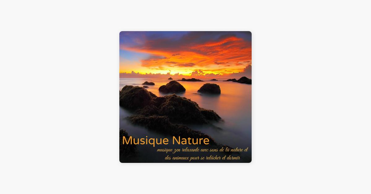 musique nature musique zen relaxante avec sons de la nature et des animaux pour se rel cher. Black Bedroom Furniture Sets. Home Design Ideas