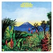 Lucien & The Kimono Orchestra - Ship (feat. FM LAETI)
