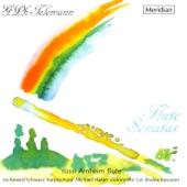Methodical Sonata in C Minor, TWV 41:c3: V. Allegro artwork