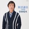 新沼謙治 全曲集 青春花火 ジャケット写真