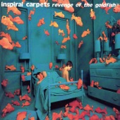 Inspiral Carpets - Irresistible Force