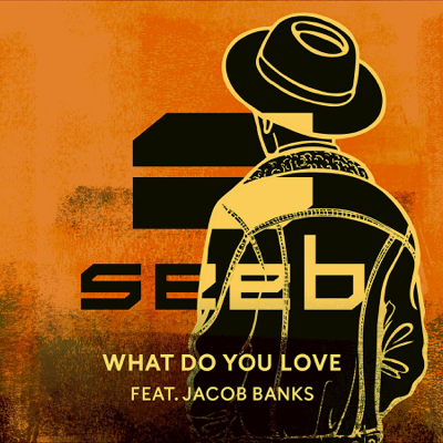 What Do You Love (feat. Jacob Banks) - Seeb song