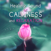 Healing Sound of Calmness and Relaxation: Zen Garden, New Age Music, Deep Sleep, Natural Tracks, Chakra Balancing, Yin Yang, Welness, Meditation, Prayer