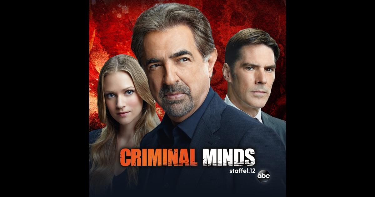 criminal minds season 4 torrent