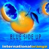 International Orange - Keep the Blue Side Up