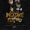Cook Laflare - Important feat Takeoff  Single Album