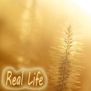 River of Life - Denny Rayman - Denny Rayman
