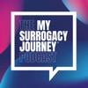 My Surrogacy Journey  artwork