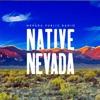 Native Nevada artwork