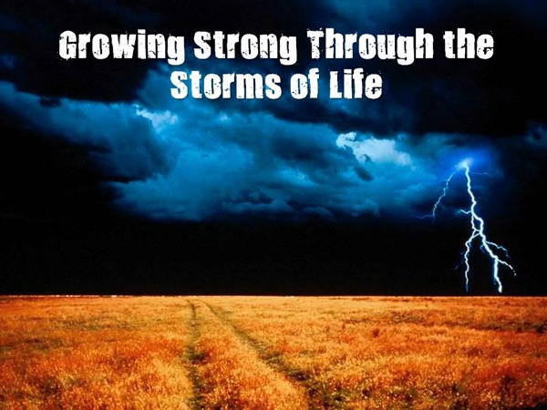 Growing Strong Through the Storms of Life