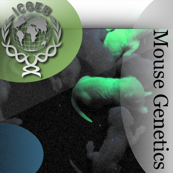 Mouse Genetics; Models for Human Diseases