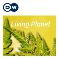 Living Planet   Deutsche Welle podcast