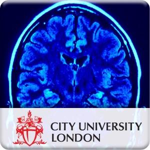 PS2002 Cognitive Psychology 1