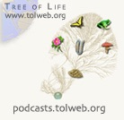Exploring Arizona Life Science Research and Biodiversity with the Tree of Life Web Project