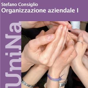 Organizzazione Aziendale LF « Federica