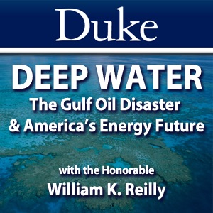 Deep Water: The Gulf Oil Disaster and America's Energy Future