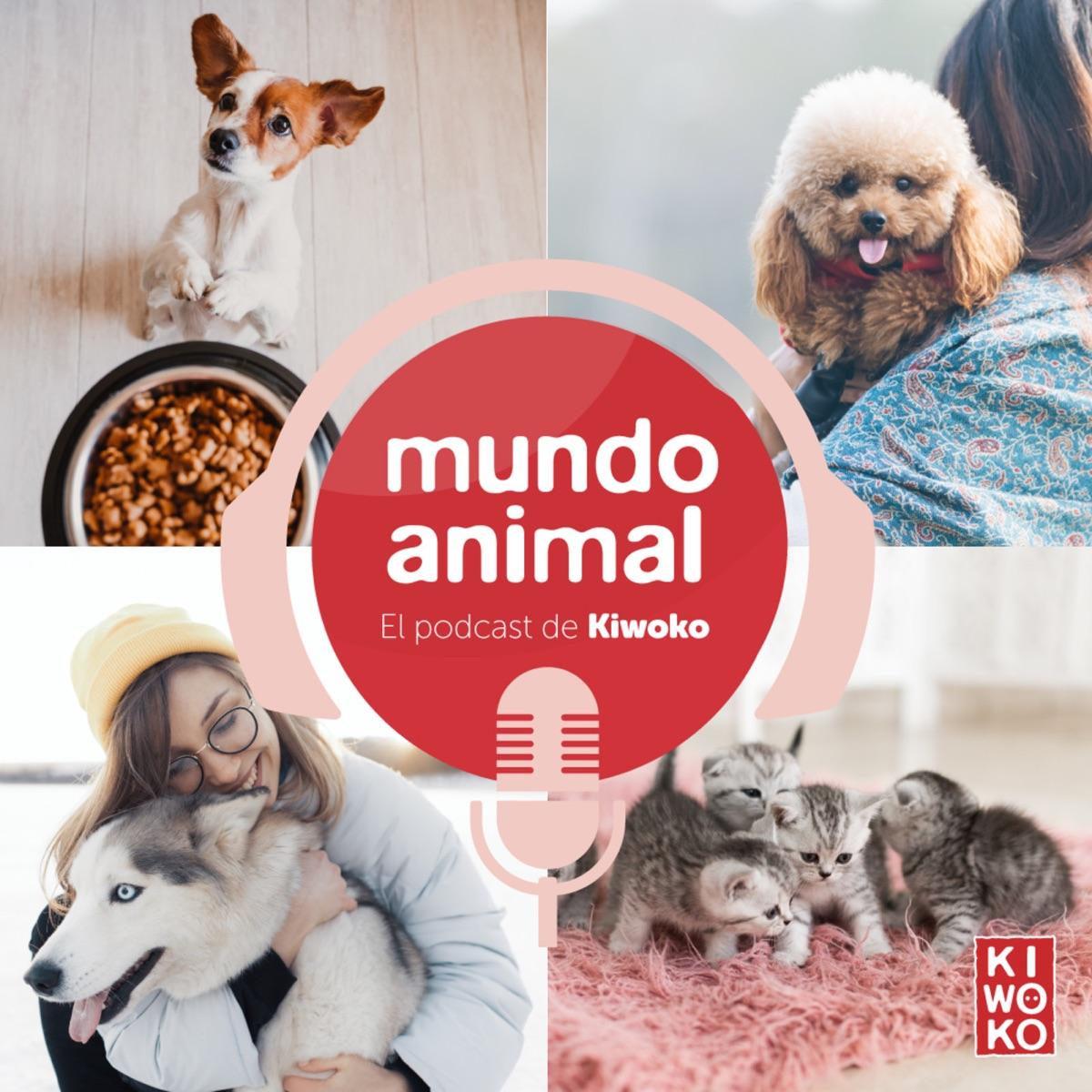 Mundo Animal - El podcast de Kiwoko