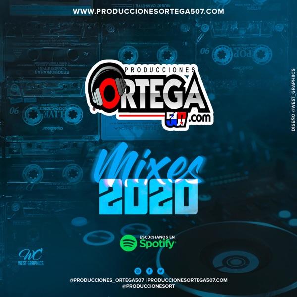 Producciones Ortega 507