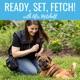 Ready, Set, Fetch!
