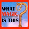 What Magic Is This? artwork