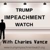 Trump Impeachment Watch artwork