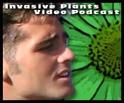 Invasive Plants of the US