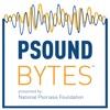 Psound Bytes artwork