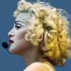 Inside The Groove - Madonna's Music artwork
